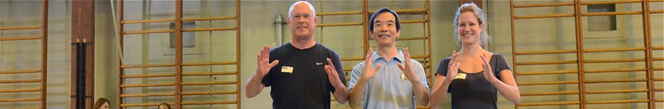 7-dr-paul-lam-and-friends-in-beligium-tai-chi-workshop-2013.jpg